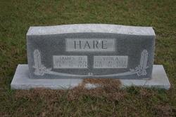 Viola <i>Key</i> Hare