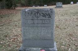 Miles Martindale