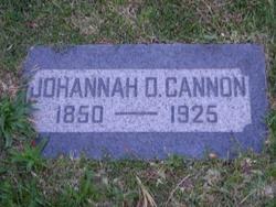 Johanna Christina <i>Danielson</i> Cannon