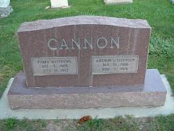 Anthon Steffensen Cannon