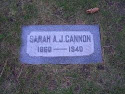 Sarah Ann <i>Jenkins</i> Cannon