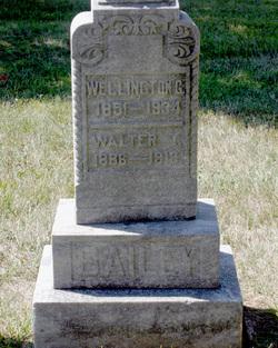 Wellington Gordon Bailey