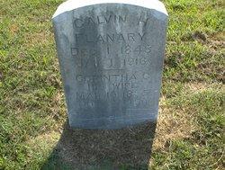 Calvin H. Flanary