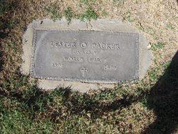 Lester O Packer