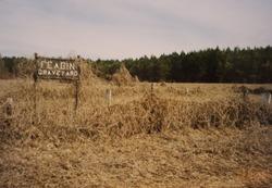 Feagin Graveyard