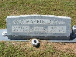 Herbie Augusta <i>Reynolds</i> Mayfield