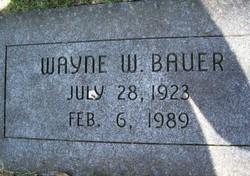Wayne Walther Bauer