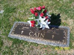 Anita C. Cain