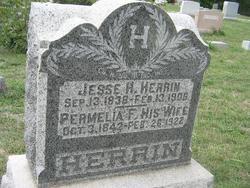 Permelia Frances <i>Russell</i> Herrin