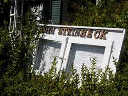 Steinbeck Estate