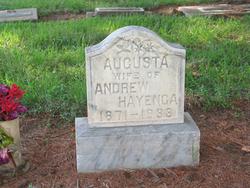 Augusta <i>Brandt</i> Hayenga