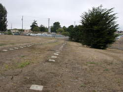 Monterey County Potters Field Cemetery