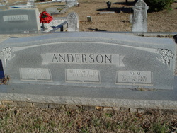 William T Anderson, Jr