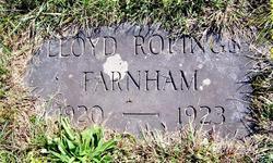 Lloyd Rolings Farnham