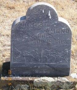 James L. Amend