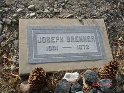 Joseph Brenner
