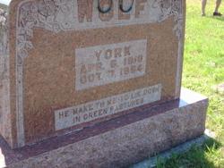 York Wolf