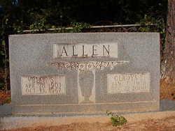 Bert S Allen