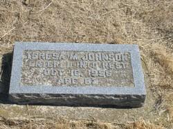 Teresa M. <i>Johnson</i> Johnson