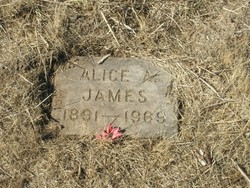 Alice A. James