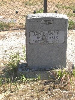 Janie <i>Angel</i> Williams