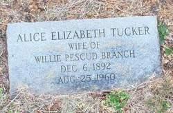 Alice Elizabeth <i>Tucker</i> Branch