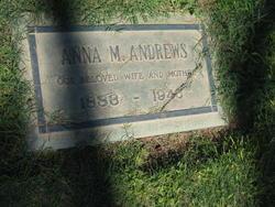 Anna M Andrews