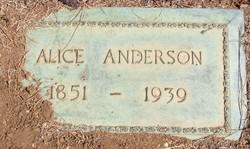 Alice Anderson