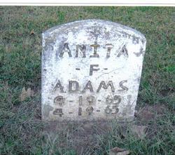 Anita Faye Adams