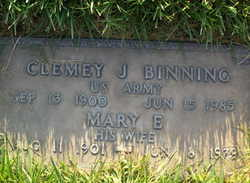Clemey J Binning