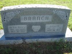 Alma Mary <i>Schehrer</i> Branch