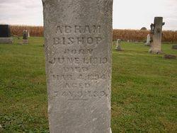 Abraham Bishop