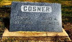 Mary Ann Terry <i>Daniel</i> Cosner