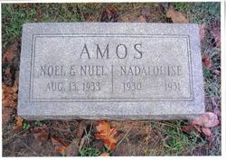 Nuel Amos
