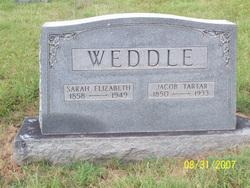 Jacob Tarter Weddle
