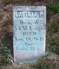 Lavinia P. Large