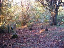Robison-Lower Fishtrap Cemetery