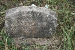 Sarah Francis Aunt Sook <i>Dawson</i> Earl