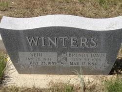 Brenda <i>Davis</i> Winters