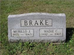 Madia Brake