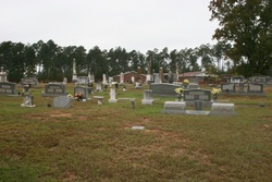Mineral Springs Cemetery