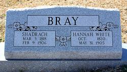 Shadrack Bray