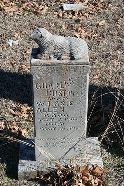 Charles Guston Allen