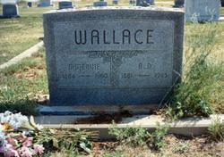 Andrew Daniel Wallace