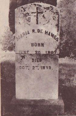 Maria R De Hames