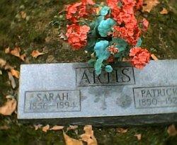 Sarah <i>Callihan</i> Artis