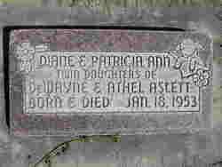 Diane Aslett
