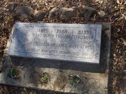 Children Of Sam & Mary Lewis