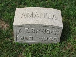 Amanda E. Breisch