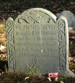Patience Burr